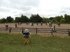 Large Outdoor Arena with Jumps